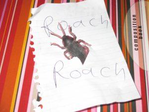 Roach Roomies